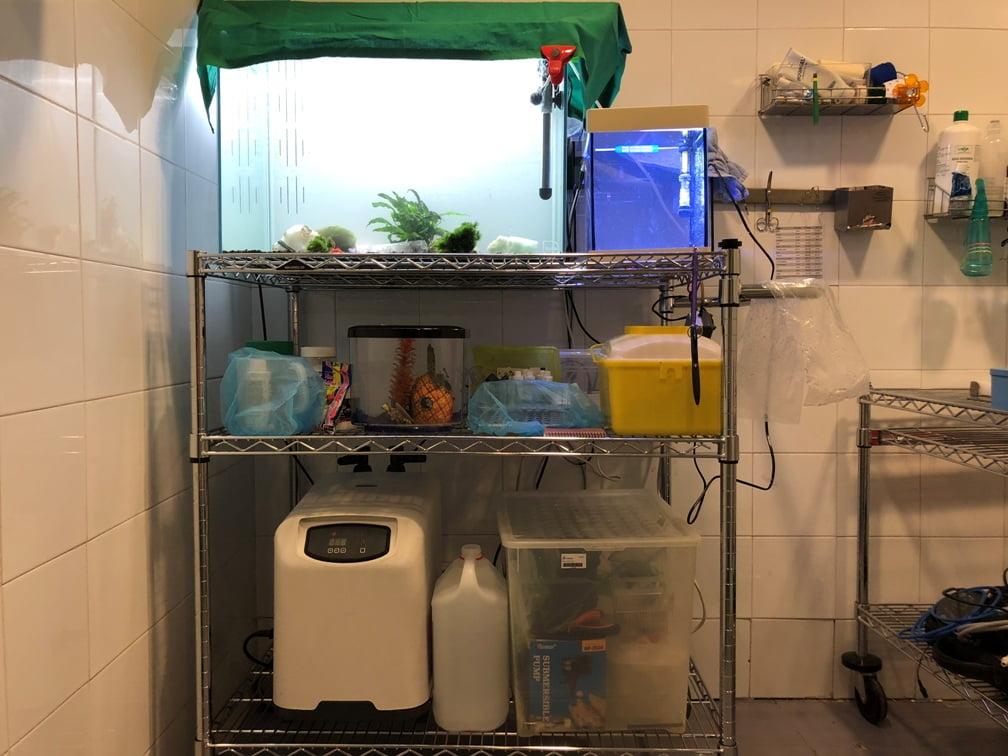 hospital anfibios y peces instalaciones cvsauces24h